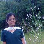 Kishori Krishna Dessai